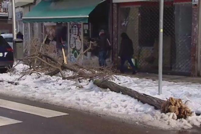 Un 40% de las calles de Madrid están limpias de nieve y basura diez días después del temporal