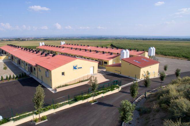 Planta de Vall Companys en Gimenells i el Pla de la Font (Segrià).