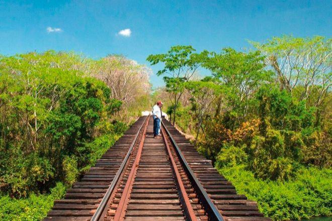 El Tren Maya tendrá un avance del 30% en 2021