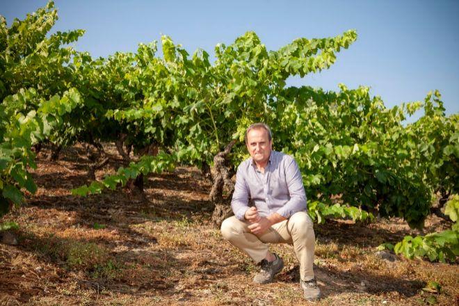 Fundada en 1890, Bodegas Riojanas sigue siendo hoy una referencia en La Rioja Alta, la subzona vinícola más prestigiosa de La Rioja. Su enólogo es Emilio Sojo, miembro de una de las familias que comenzó elaborando vino bajo esta marca y que hoy está al frente de la producción de la empresa en otras denominaciones de origen como Rueda, Toro, Rías Baixas o Monterrei