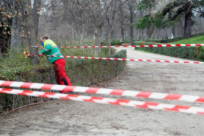 Un operario trabaja en una zona acotada en el parque de El Retiro, tras los destrozos de Filomena.