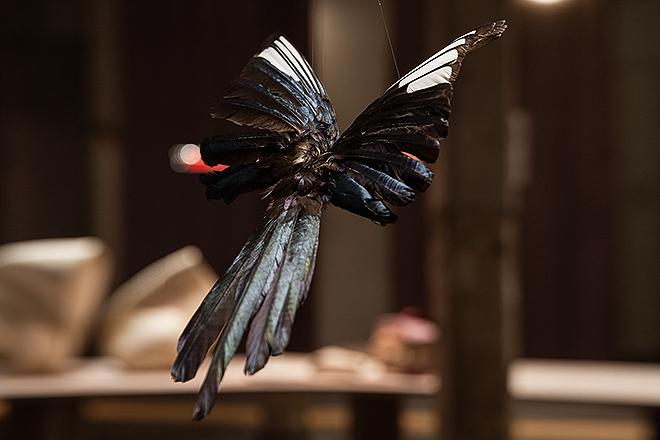 Una de las creaciones de arte plumario de Henar Iglesias.
