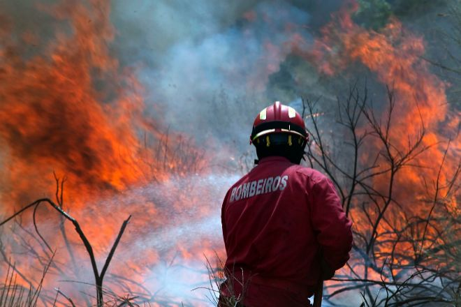Tres años y medio de cárcel por provocar un incendio que calcinó 144 hectáreas