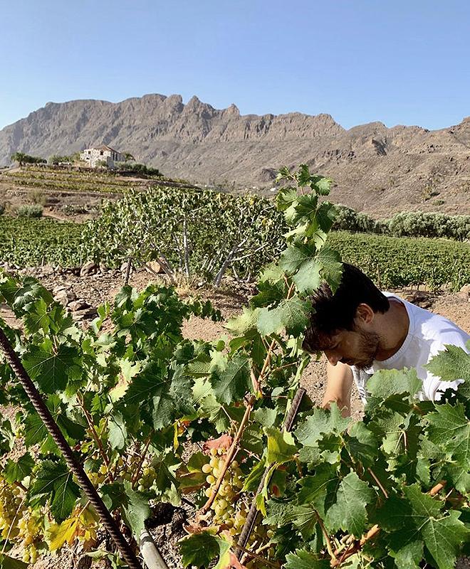 David Silva, en los viñedos de Tamerán.
