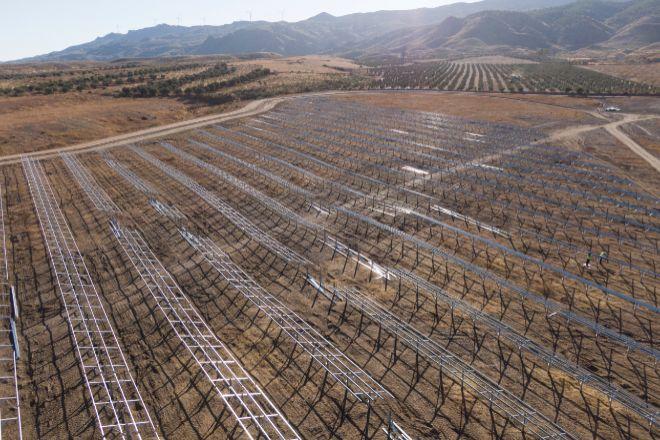 Planta solar La Cabrita, desarrollada por AQ Volta, de Aquila Capital.