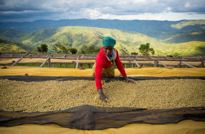 agricultora de café que forma parte del proyecto de economía circular del grupo