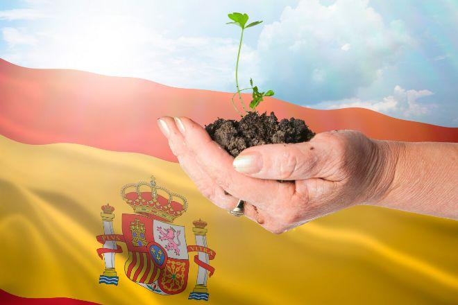 La economía española rebotará un 5,9% por el tirón de la demanda interna