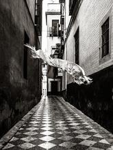 El mantón empieza su recorrido en la calle Vida y va llegando en su...