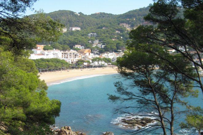 Playa situada en el término municipal de Palafrugell, una de las localidades por las que circularía el 'tran-tren' que se proyecta en la Costa Brava.