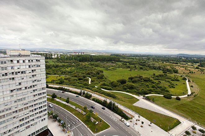Anillo Verde | Recientemente fue reconocido por la ONU como uno de los 50 mejores ejemplos de restauración del ecosistema a nivel internacional en el Día Mundial del Medio Ambiente. Sus 33 kilómetros de extensión, que circundan toda la ciudad de Vitoria, son el resultado de un ambicioso plan medioambiental que también ha logrado la presencia de zonas verdes a menos de 300 metros de cada vecindario.