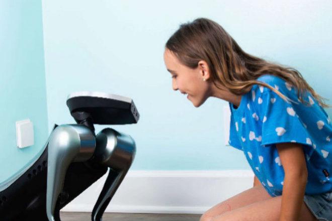 Funciona con inteligencia artificial, que le ayuda a interactuar con sus dueños y de sentir sus emociones.