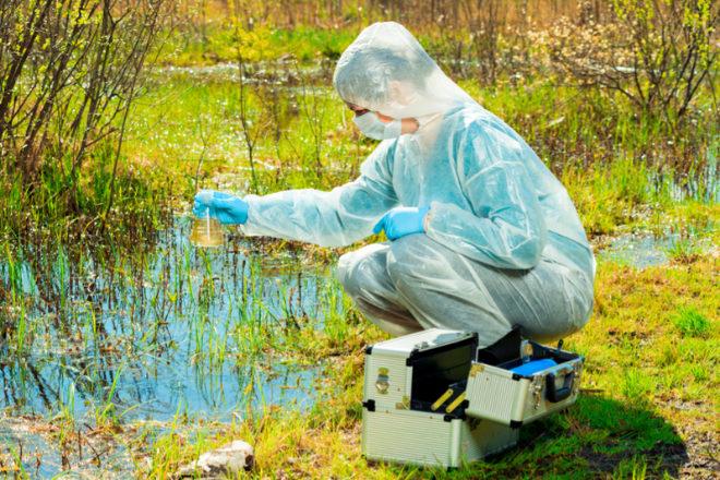 El de planificador de restauración ambiental es uno de los perfiles mejor pagados y con menos estrés.