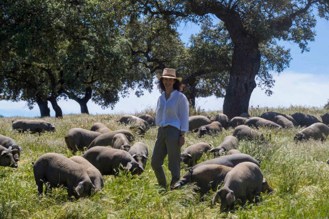 "Teresa Domecq: ""Necesitamos un 'lobby' del jamón"""