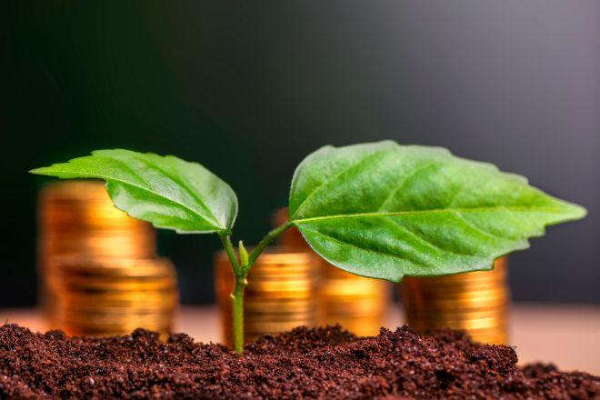 Los criterios ESG son una condición importante para muchos inversores.