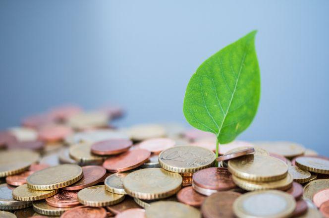 La inversión sostenible ya no es considerada una moda pasajera.
