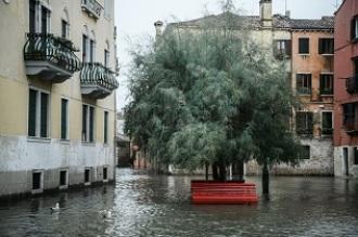 ¿Qué pueden hacer las ciudades ante la subida del nivel de mar?