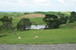 Uno de los paisajes neozelandeses donde se rodó la trilogía de 'El Señor de los Anillos'