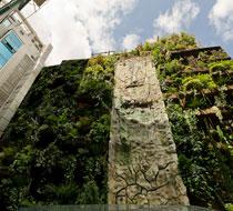 Manuel Pasquin En Un Jardin Se Pide Funcionalidad Entorno